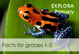 Explora Primary Image